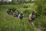 Стали известны потери войск Украины в Донбассе при президенте Владимире Зеленском