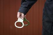 Экс-директора новосибирского Биотехнопарка задержали за мошенничество и коррупцию