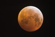 Предсказания Ванги о войне за Марс и уничтожении Луны обнародовали в СМИ