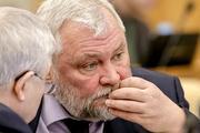 Депутат объяснил, зачем  нижегородским чиновникам вазелин: