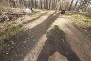 Корреспондент АН дошел до экватора самоизоляции в лесу