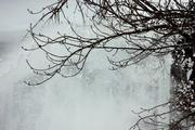 """Снегопад """"не пустил"""" тюменских школьников на занятия"""