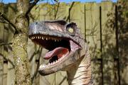 Останки ранее неизвестного науке динозавра обнаружены на территории Египта