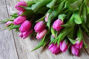 В цветочных магазинах Москвы рассказали о ценах на букеты к 8 марта