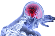 Названы несколько правил, помогающих сохранить здоровье мозга