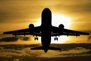 Самолет несколько часов кружил над Новосибирском из-за попавшей в стекло птицы