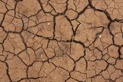 Ученые: аномальная жара может скоро унести жизни огромного числа людей