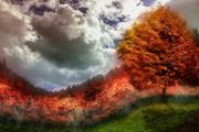Из-за лесных пожаров в Испании экстренно эвакуировали 3 тысячи человек