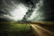 В Хабаровском крае сильный порыв ветра сорвал крышу школы, пострадал ребенок