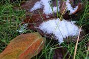 Первый снег: опубликован прогноз метеорологов