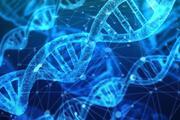 Ученый из КНР заявил, что впервые в истории человечества изменил ДНК эмбриона