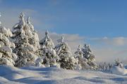 Стало известно, какая погода ждет москвичей в первый день зимы