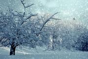 В конце недели на Москву обрушатся снегопады