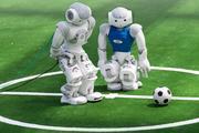 Футбольная команда из роботов создана российскими разработчиками