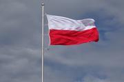 """Сенатор Алексей Пушков решил указать Польше на ее """"место в мире"""""""
