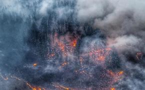 Что скрывает дым сибирских пожаров