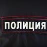 Пушкино: девушка покусала двух полицейских