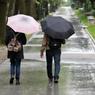 Синоптики предупредили москвичей о дождях и пониженном атмосферном давлении в понедельник