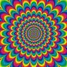 В Сети обсуждают новую оптическую иллюзию с фото