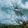 Эколог считает, что пик лесных пожаров на территории Сибири пройден