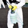 Операция по очистке кварталов у Нотр-Дама от загрязнения свинцом началась в Париже