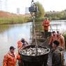Толстолобиков запустили в пруд-охладитель Нововоронежской АЭС