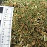 Члена избиркома из Курской области посадили на полгода за марихуану