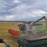 Экспорт зерна впервые превысил 50 млн тонн