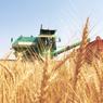 Бразилия переходит на российскую пшеницу