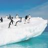 Таинственный источник тепла плавит лёд Антарктиды
