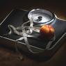Ученые: ожирение может зависеть от нарушений в работе мозга