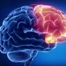 Мозг начинает стареть в 39 лет, но можно притормозить этот процесс