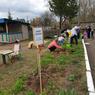 В Кирове воспитанники детсадов приняли участие в движении «Сады Победы»