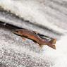 На Камчатке и Чукотке начались поиски реликтовых лососей