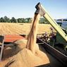 Урожай зерна превысит прошлогодний