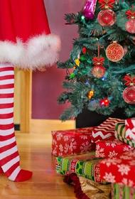 Девочка из Австрии написала письмо Санта-Клаусу, но послание получил российский фермер