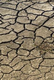 Зимбабве грозит беспрецедентный голод
