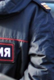 В Санкт-Петербурге во время новогодних праздников няня похитила маленькую девочку