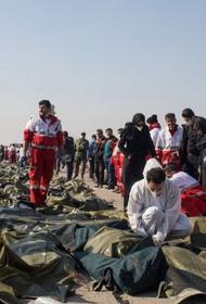 Европейский авиаэксперт о катастрофе в Тегеране
