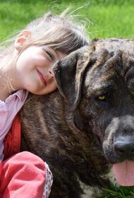 Ученые: собаки в доме помогут избежать шизофрении