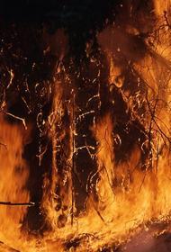 Из-за пожаров в Австралии закрыли несколько посольств