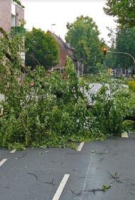 11 человек погибли в США из-за  торнадо и бурь за два дня