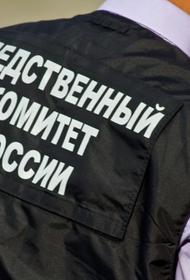 В СК раскрыли мотив убийства главы центра