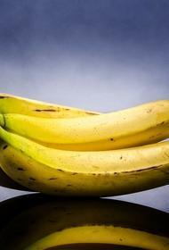 Англичанка купила в супермаркете бананы, из которых выползли сотни пауков