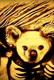 Крымчанка отразила пожары в Австралии в песочной анимации