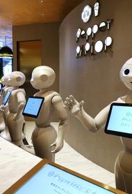 В Японии начали строить город-утопию с домашними роботами в роли сиделок и нянь