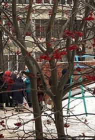 В Екатеринбурге за выброшенной из магазинов просрочкой стали выстраиваться очереди