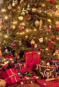 Новогодние праздники обошлись россиянам почти в 15 тысяч рублей