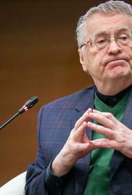 Жириновский: В ЛДПР решили поддержать кандидатуру Мишустина