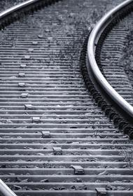 В Ленобласти старушка попала под поезд и выжила